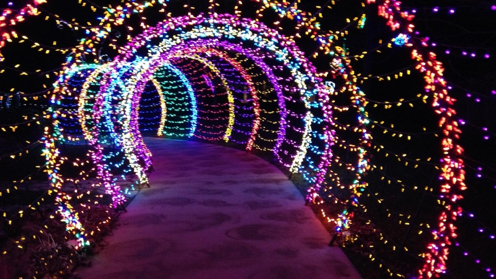 Wps garden of lights has new features this year news - Green bay botanical gardens christmas lights ...